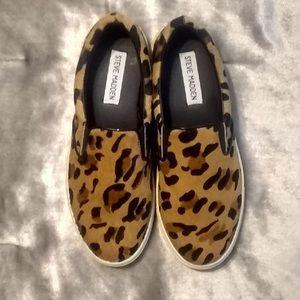 Steve Madden Fashion Sneaker Ecentric Leopard